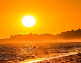 Conheça os benefícios da vitamina D